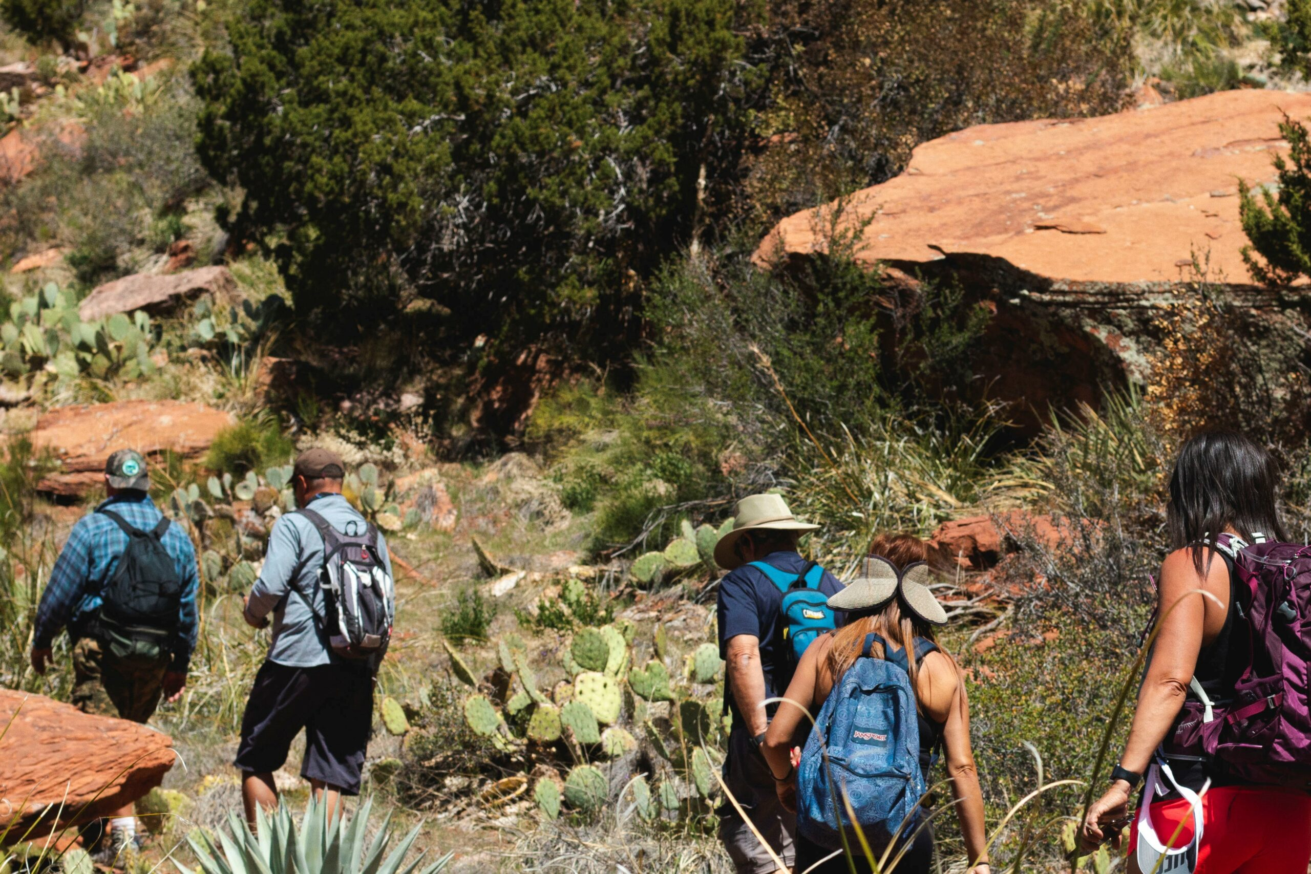 Group hike along Long Canyon Trail